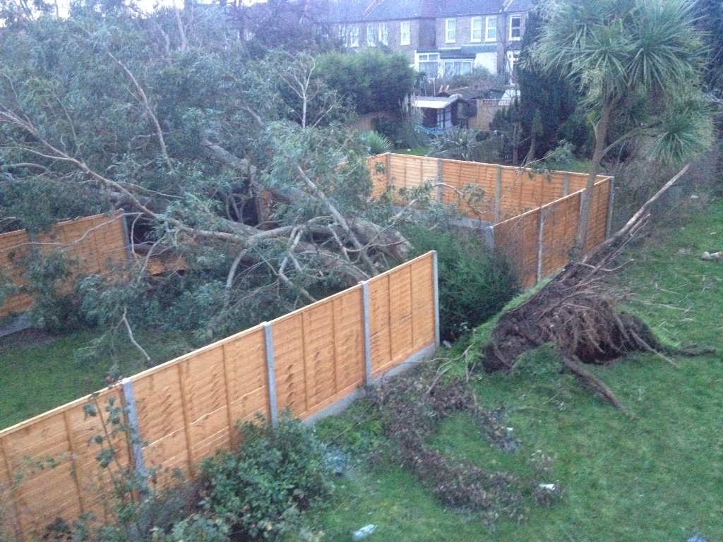 Gardening And Landscaping In Bromley Bexley Greenwich