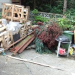 Rubbish collected from garden in Bromley Kent